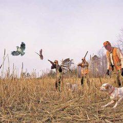 Започна провеждането на изпитите за придобиване на право на лов